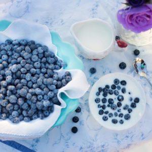 ¿Cómo hacer una dieta probiótica?